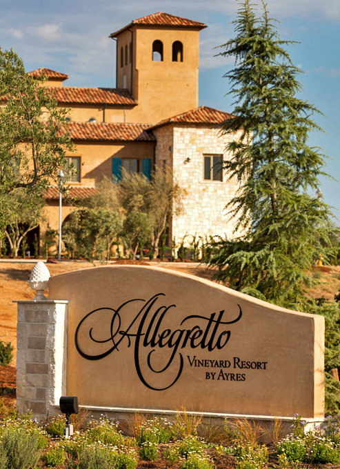 3. Allegretto Hero Sign